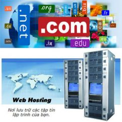Domain và Hosting