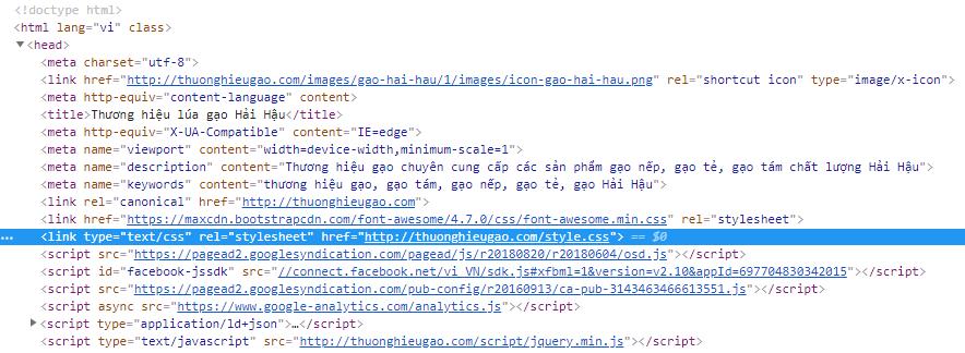 Nơi lưu giữ CSS hệ thống