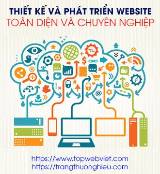 Dịch vụ phát triển website Topwebviet
